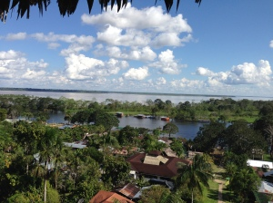 The Amazon River from Peru